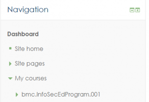 Screenshot of the Moodle navigation menu